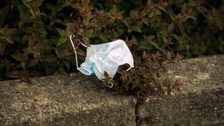 This face mask was discarded in a hedgerow in Whitley Bay